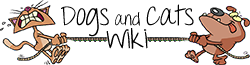 Dogs and Cats Wiki