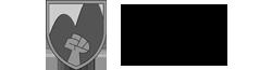 Richmore Academy Wiki