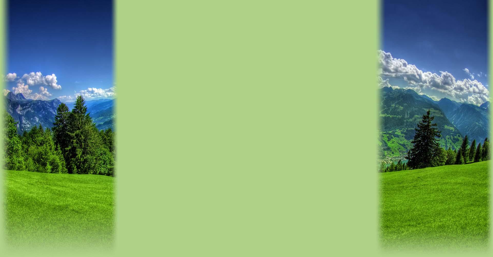Eco Luxury Green Wiki Fandom Powered By Wikia