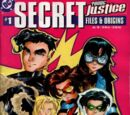 Young Justice Secret Files and Origins Vol 1 1