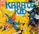 Karate Kid Vol 1 13