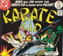 Karate Kid Vol 1 8