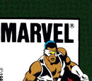 Falcon Vol 1 2/Images
