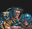 Wolverine Squad (Multiverse)