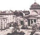 Synagogi