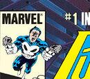 Punisher Comic Books