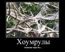 MP variant rules.ru.jpg