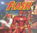 The Flash: The Secret of Barry Allen (Collected)