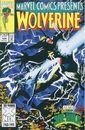 Marvel Comics Presents Vol 1 124.jpg