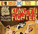 Richard Dragon, Kung-Fu Fighter Vol 1 3