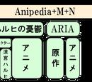 Anipedia+M+N設立