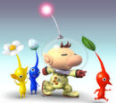 Pikmin Party