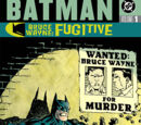 Batman: Bruce Wayne - Fugitive Vol 1 (Collected)