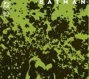 Batman: Dark Victory Vol 1 11