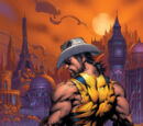 Wolverine (Earth-20080522)