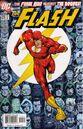 Flash v.2 225.jpg