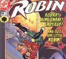 Robin Vol 4 91