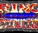 Ring of Destruction: Slam Masters II
