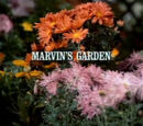 Episode 912: Marvin's Garden