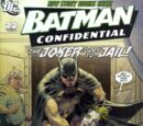 Batman Confidential Vol 1 22
