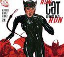 Catwoman Vol 3 77