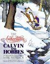 The Authoritative Calvin and Hobbes.jpg