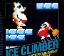Ice Climber (game)
