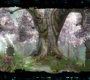 Druids' grove