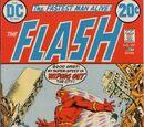 The Flash Vol 1 221