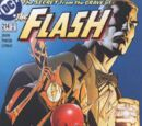Flash Vol 2 214