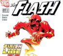 Flash Vol 2 227