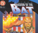 Batman: Shadow of the Bat Vol 1 6