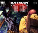 Batman: Legends of the Dark Knight Vol 1 211