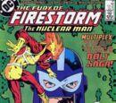 Firestorm Vol 2 47