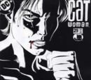 Catwoman Vol 3 29