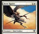 Aven Squire