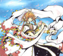 Gallery:Princess Tsubasa