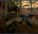 IGI2 14 Island Assault
