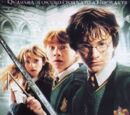 Harry Potter e la Camera dei Segreti (film)
