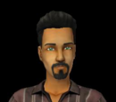 Sims from The Sims 2 (base game)