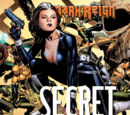 Secret Warriors Vol 1 3