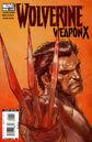 Wolverine Weapon X Vol 1 1.jpg
