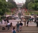California University