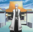 Captain Ichimaru.png