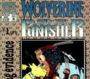 Wolverine and The Punisher: Damaging Evidence Vol 1 1