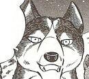 Shinsaku (GDW Anime)
