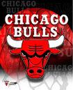 Bulls.jpg