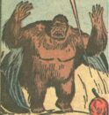 Ape (Old West) (Earth-616) from Rawhide Kid Vol 1 39 0001.jpg