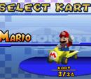 Karts in Mario Kart DS