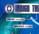 Indigo Tribe (New Earth)
